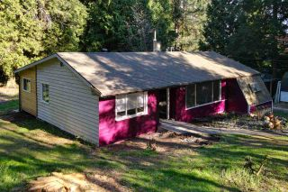 Photo 20: 894 NORTH Road in Gibsons: Gibsons & Area House for sale (Sunshine Coast)  : MLS®# R2570173