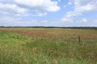 Photo 11: Twp 510 RR 33: Rural Leduc County Rural Land/Vacant Lot for sale : MLS®# E4256128