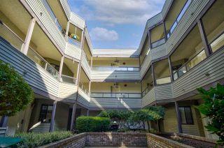 "Photo 3: 104 1467 MARTIN Street: White Rock Condo for sale in ""Searidge Court"" (South Surrey White Rock)  : MLS®# R2560103"