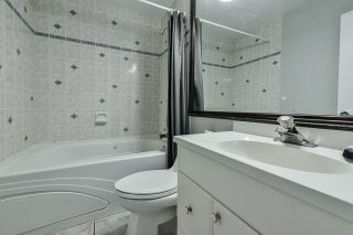 """Photo 24: 4667 200 Street in Langley: Langley City House for sale in """"Langley"""" : MLS®# R2564320"""