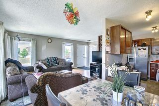 Photo 10: 217 Templemont Drive NE in Calgary: Temple Semi Detached for sale : MLS®# A1120693