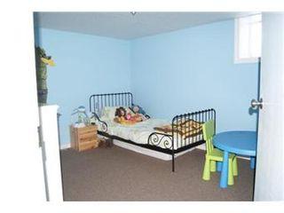 Photo 11: Scrivener Acreage: Hague Acreage for sale (Saskatoon NW)  : MLS®# 393157