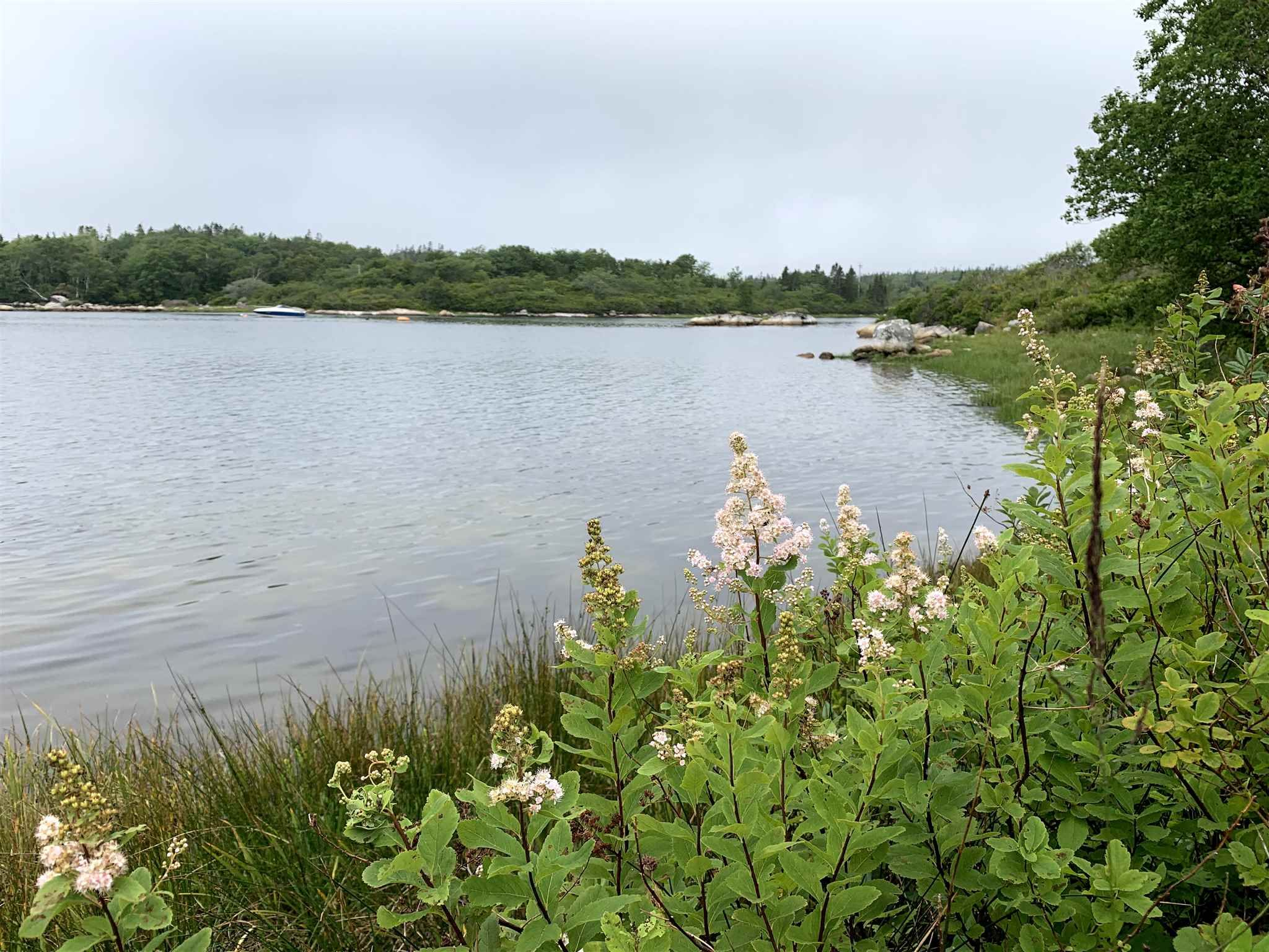 Photo 6: Photos: Lot 5A East Dover Road in East Dover: 40-Timberlea, Prospect, St. Margaret`S Bay Vacant Land for sale (Halifax-Dartmouth)  : MLS®# 202104851