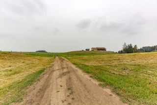 Photo 33: 224005 Twp 470: Rural Wetaskiwin County House for sale : MLS®# E4255474