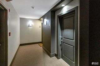 """Photo 6: 204 20078 FRASER Highway in Langley: Langley City Condo for sale in """"Varsity"""" : MLS®# R2602094"""