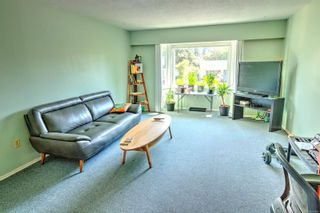 Photo 3: 1704 Carrick St in : Vi Jubilee House for sale (Victoria)  : MLS®# 883440