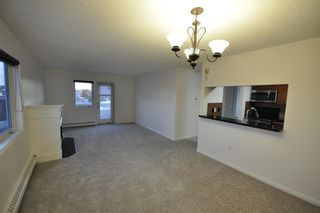Photo 8: 306 790 Kingsmere Crescent SW in Calgary: Kingsland Apartment for sale : MLS®# A1065637