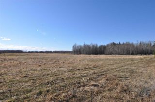 Photo 13: 10 57126 Range Road 12: Rural Barrhead County Rural Land/Vacant Lot for sale : MLS®# E4241768