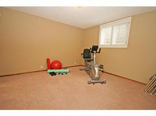 Photo 19: 13115 BONAVENTURE Drive SE in CALGARY: Lake Bonavista Residential Detached Single Family for sale (Calgary)  : MLS®# C3621899