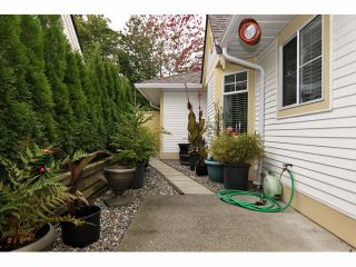 "Photo 20: 25 21138 88TH Avenue in Langley: Walnut Grove Townhouse for sale in ""Spencer Green"" : MLS®# F1323344"