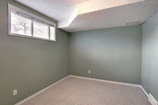 Photo 28: 185 Citadel Drive NW in Calgary: Citadel Row/Townhouse for sale : MLS®# A1066362