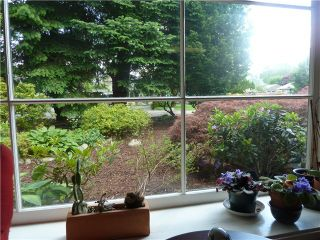 Photo 7: 1218 ROSEWOOD Crescent in North Vancouver: Norgate House for sale : MLS®# V1066452