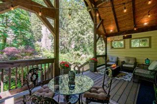 Photo 14: 800 HOT SPRINGS Road: Harrison Hot Springs Business with Property for sale : MLS®# C8038379