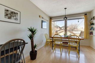 Photo 17: 516 21 Avenue NE in Calgary: Winston Heights/Mountview Semi Detached for sale : MLS®# A1088359