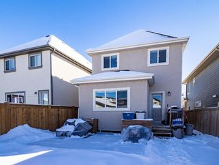 Photo 34: 115 Marquis Court SE in Calgary: Mahogany Detached for sale : MLS®# A1071634