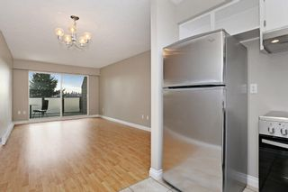 "Photo 5: 109 212 FORBES Avenue in North Vancouver: Lower Lonsdale Condo for sale in ""Forbes Manor"" : MLS®# R2121714"