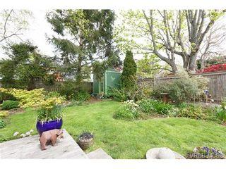 Photo 18: 1254 Basil Ave in VICTORIA: Vi Hillside House for sale (Victoria)  : MLS®# 669395