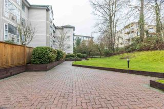 """Photo 20: 402 2963 NELSON Place in Abbotsford: Central Abbotsford Condo for sale in """"BRAMBLEWOODS"""" : MLS®# R2424654"""