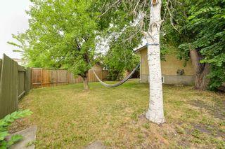 Photo 48: 10223 171A Avenue in Edmonton: Zone 27 House for sale : MLS®# E4255487