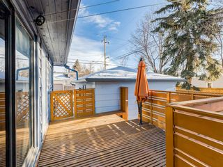 Photo 38: 95 Ferncliff Crescent SE in Calgary: Fairview Detached for sale : MLS®# A1064499