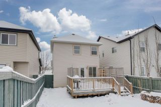 Photo 29: 12040 19 Avenue in Edmonton: Zone 55 House for sale : MLS®# E4228766
