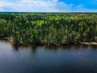 Photo 10: 5 Pulford's Island in Kenora: Vacant Land for sale : MLS®# TB210666
