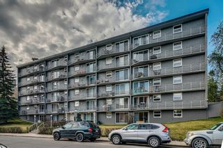 Photo 2: 102 1027 Cameron Avenue SW in Calgary: Lower Mount Royal Apartment for sale : MLS®# A1058522
