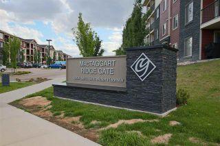 Photo 15: 207 5816 MULLEN Place in Edmonton: Zone 14 Condo for sale : MLS®# E4229658