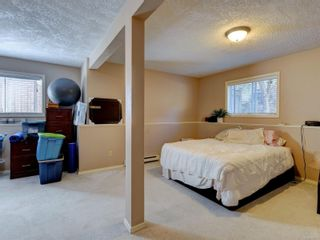 Photo 24: 6668 Rey Rd in Central Saanich: CS Tanner House for sale : MLS®# 886103