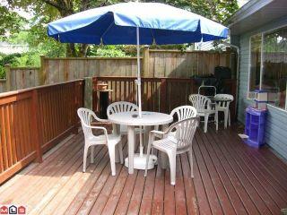 Photo 6: 11535 MILLAR Road in Surrey: Royal Heights 1/2 Duplex for sale (North Surrey)  : MLS®# F1102884