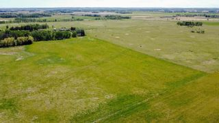 Photo 8: 454064 RGE RD 275: Rural Wetaskiwin County House for sale : MLS®# E4246862