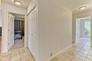 Photo 17: 10843 Mapleshire Crescent SE in Calgary: Maple Ridge Detached for sale : MLS®# A1099704