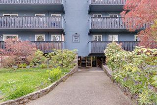 Photo 24: 301 1215 Bay St in : Vi Fernwood Condo for sale (Victoria)  : MLS®# 875030