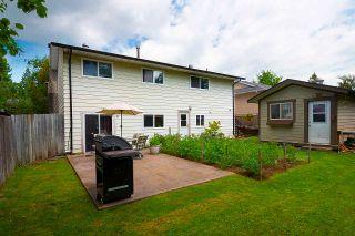 Photo 36: 20820 STONEY Avenue in Maple Ridge: Southwest Maple Ridge House for sale : MLS®# R2471486