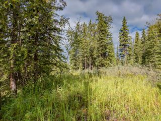 Photo 7: 8 34364 RANGE ROAD 42: Rural Mountain View County Land for sale : MLS®# A1017744