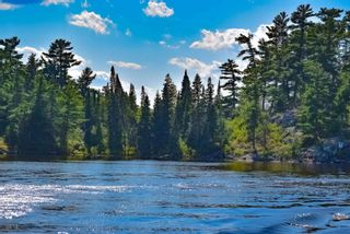 Photo 11: Lot 8 Five Point Island in South of Kenora: Vacant Land for sale : MLS®# TB212085