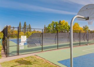 Photo 43: 33 Windermere Road SW in Calgary: Wildwood Detached for sale : MLS®# A1146094