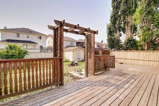Photo 44: 766 Coral Springs Boulevard NE in Calgary: Coral Springs Detached for sale : MLS®# A1136272