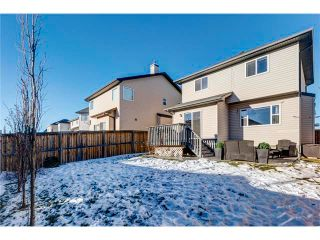Photo 28: 41 ROYAL BIRCH Crescent NW in Calgary: Royal Oak House for sale : MLS®# C4041001