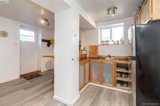 Photo 19: 1416 Denman St in VICTORIA: Vi Fernwood House for sale (Victoria)  : MLS®# 806894