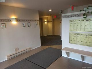 Photo 17: 103 3215 Rutledge St in VICTORIA: SE Quadra Condo for sale (Saanich East)  : MLS®# 780280