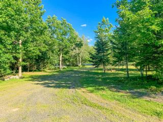 Photo 25: 782 Waterloo Road in Waterloo: 405-Lunenburg County Residential for sale (South Shore)  : MLS®# 202117282