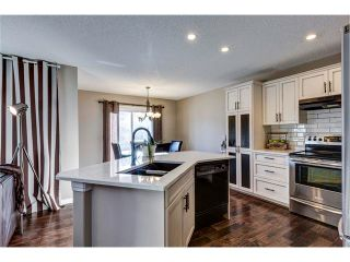 Photo 6: 41 ROYAL BIRCH Crescent NW in Calgary: Royal Oak House for sale : MLS®# C4041001