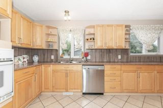 Photo 10: 703 KNOTTWOOD Road S in Edmonton: Zone 29 House for sale : MLS®# E4261398