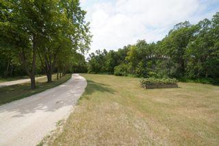 Photo 91: 39066 Road 64 N in Portage la Prairie RM: House for sale : MLS®# 202116718