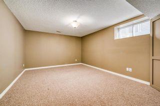 Photo 15: 821 Auburn Bay Boulevard SE in Calgary: Auburn Bay Detached for sale : MLS®# A1064937