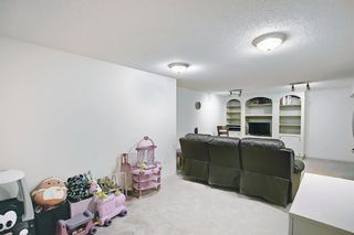 Photo 19: 5919 Pinepoint Drive NE in Calgary: Pineridge Detached for sale : MLS®# A1111211