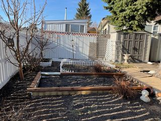 Photo 29: 119 WHITEVIEW Place NE in Calgary: Whitehorn Detached for sale : MLS®# A1097509