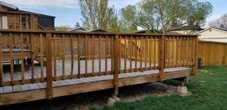 Photo 11: 3603 61 Street in Edmonton: Zone 29 House for sale : MLS®# E4244832
