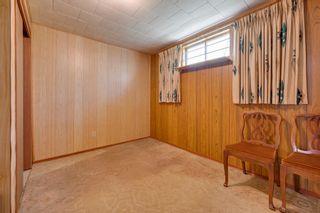 Photo 36: 7228 131A Avenue in Edmonton: Zone 02 House for sale : MLS®# E4252234